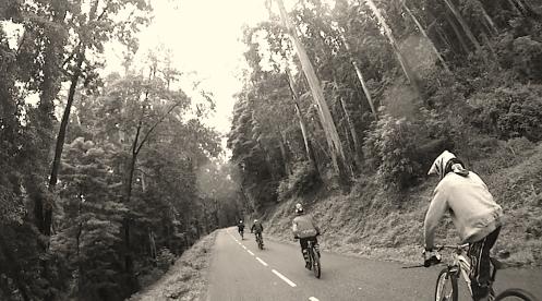 Road to van
